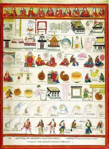 Атлас тибетской медицины. Лист 6