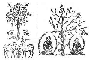 Хулуппу-деревце (ива)